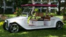 Sandals Wedding Chariot